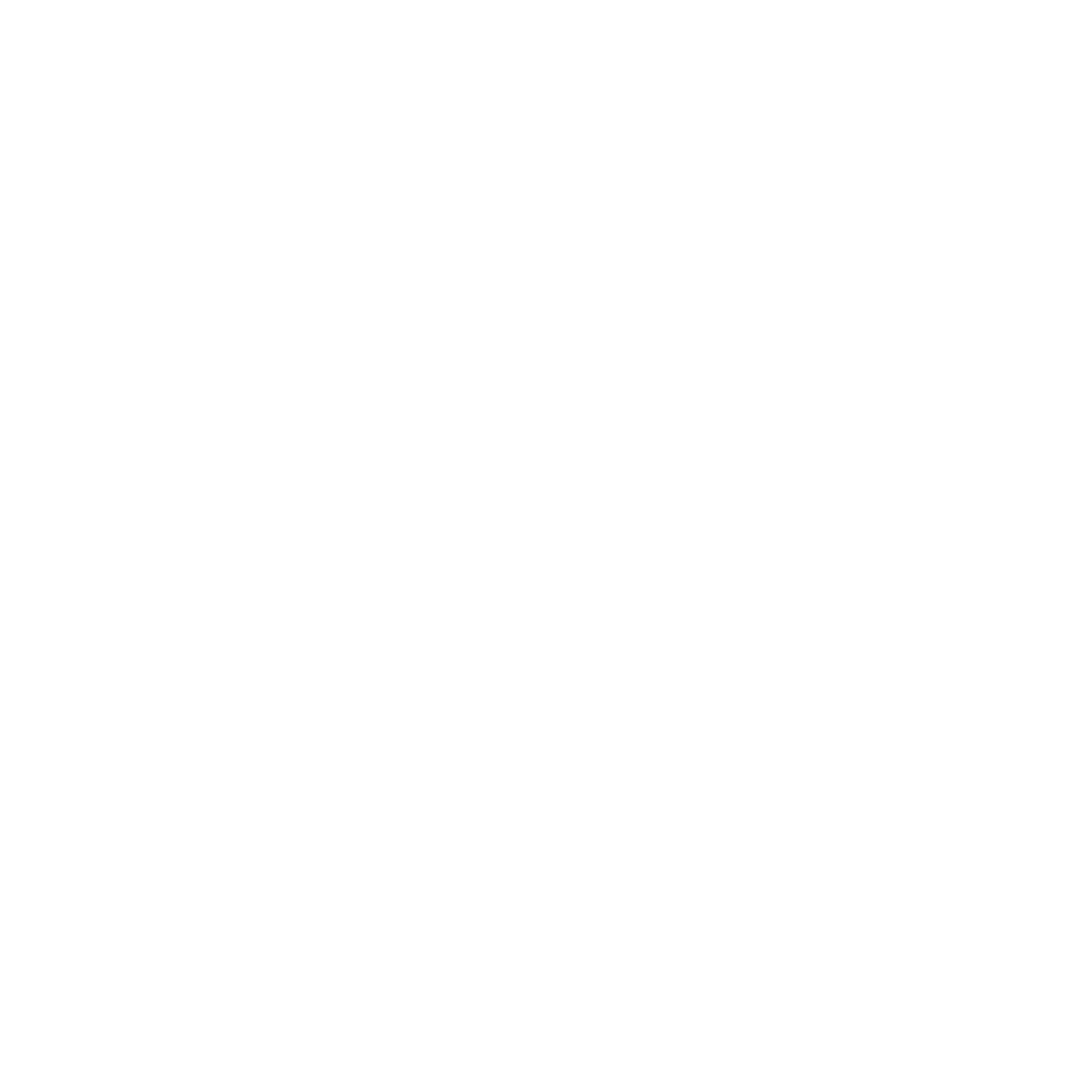 Logo discord blanc